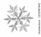 snowflake isolated on white... | Shutterstock .eps vector #1252987642