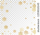 winter snowflakes and circles... | Shutterstock .eps vector #1253010145