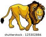 lion panthera leo side view...