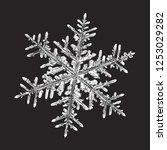 white snowflake isolated on... | Shutterstock .eps vector #1253029282