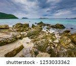 tropical beach  stone and beach ... | Shutterstock . vector #1253033362
