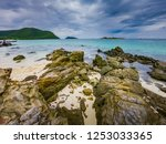 tropical beach  stone and beach ... | Shutterstock . vector #1253033365
