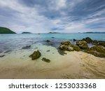 tropical beach  stone and beach ... | Shutterstock . vector #1253033368