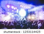 happy people dancing and having ...   Shutterstock . vector #1253114425
