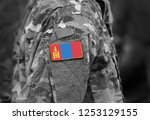 flag of mongolia on soldiers... | Shutterstock . vector #1253129155
