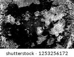 abstract background. monochrome ... | Shutterstock . vector #1253256172