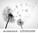 abstract black dandelion ... | Shutterstock .eps vector #1253331658