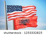 flags of the usa and albania... | Shutterstock . vector #1253332825