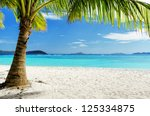 green tree on  white sand beach.... | Shutterstock . vector #125334875