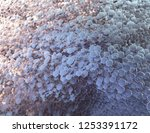 abstract polygonal image with... | Shutterstock . vector #1253391172