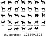 Stock vector dog breeds silhouette set 1253491825