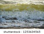 sea foamy waves seashore  | Shutterstock . vector #1253634565