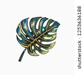 tropical print. palm leaf...   Shutterstock .eps vector #1253636188