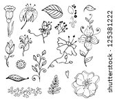 hand drawn floral design... | Shutterstock .eps vector #125381222