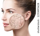 zoom circle shows dry facial... | Shutterstock . vector #1253895628