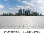 panoramic skyline and modern...   Shutterstock . vector #1253931988