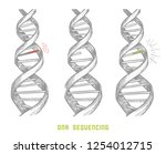 genome sequencing. dna... | Shutterstock .eps vector #1254012715