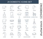 domestic icons. trendy 25... | Shutterstock .eps vector #1254080362
