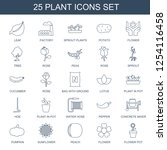 plant icons. trendy 25 plant... | Shutterstock .eps vector #1254116458