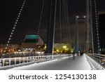 buildings are seeing from the...   Shutterstock . vector #1254130138