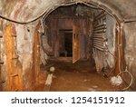 rusty door in the dungeon. door ... | Shutterstock . vector #1254151912