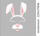 bunny face mask.rabbit  ears...   Shutterstock .eps vector #1254179848