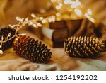 christmas and new year's winter ... | Shutterstock . vector #1254192202