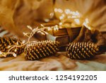 christmas and new year's winter ... | Shutterstock . vector #1254192205