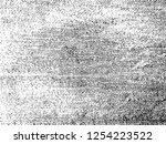 vector grunge textile... | Shutterstock .eps vector #1254223522