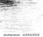 vector grunge textile... | Shutterstock .eps vector #1254223525