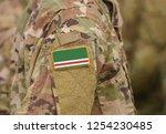 flag of chechen republic of... | Shutterstock . vector #1254230485