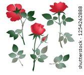 illustration of roses flowers ...   Shutterstock .eps vector #1254262888