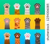 cats paw flat. cat paws claw... | Shutterstock .eps vector #1254306085