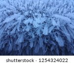 ice crystals on a cold morning   Shutterstock . vector #1254324022