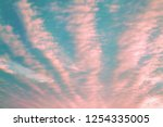 living coral color of the year... | Shutterstock . vector #1254335005