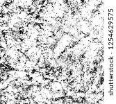 grunge background black and... | Shutterstock .eps vector #1254629575