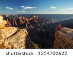a hiker in the grand canyon... | Shutterstock . vector #1254702622