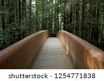 hiking trails at the lady bird... | Shutterstock . vector #1254771838