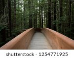 hiking trails at the lady bird... | Shutterstock . vector #1254771925