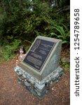 california redwoods national... | Shutterstock . vector #1254789658