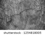 close up rustic wood table with ... | Shutterstock . vector #1254818005
