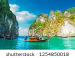 beautiful scenic landscape of... | Shutterstock . vector #1254850018