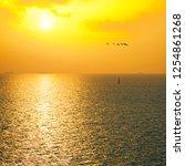 Golden Sunset Sky View  Ocean ...
