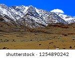 leh ladakh india april 11  ...   Shutterstock . vector #1254890242