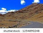 leh ladakh india april 11  ...   Shutterstock . vector #1254890248