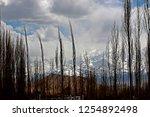 leh ladakh india april 11  ...   Shutterstock . vector #1254892498