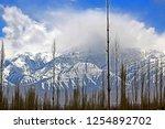 leh ladakh india april 11  ...   Shutterstock . vector #1254892702