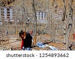 leh ladakh india april 11   the ...   Shutterstock . vector #1254893662
