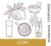 lucuma. fruit  leaves. powder ...   Shutterstock .eps vector #1254914032
