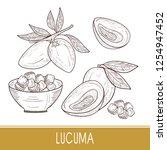lucuma. fruit  leaves  slice....   Shutterstock .eps vector #1254947452